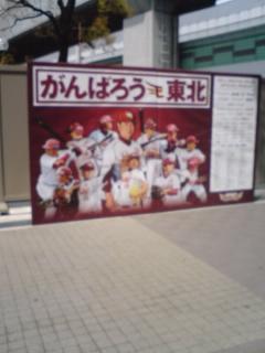 甲子園で野球観戦
